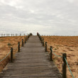 Catwalk of dune — Stock Photo #34560941