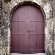 Castle door — Stock Photo