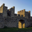 Detail of a medieval Iberian Castle — Stock Photo