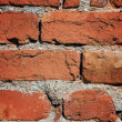 Old brick wall — Photo