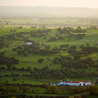 Alentejo plain by the morning — Stock Photo