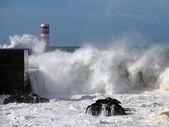 Stormy harbor — Stock Photo