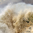 Detailed big crashing wave — Stock Photo