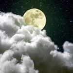 Full moon — Stock Photo