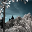 Infrared StLuzia — Stock Photo #37230851
