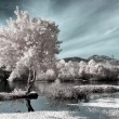 Infrared river landscape — Stock Photo #40714893