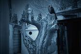 Cementerio noctámbulos — Foto de Stock