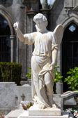 公墓的天使 — 图库照片
