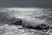 Wave in a dark sparkling sea — Stock Photo