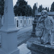Old cemetery statue — Stock Photo #50920161