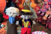Szmaciane lalki — Zdjęcie stockowe