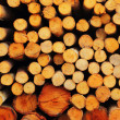 A pile of wood. — Stock Photo
