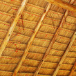 Thatched roof. — Stockfoto