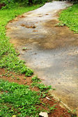 Pavement with green grass. — Stock Photo