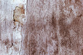 Brown wood wall - vintage style — Stock Photo