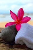 Frangipani flowers - pink flowers and a white towel. — Stock Photo