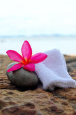 Frangipani flowers - pink flowers and a white towel — Stock Photo