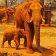 Elephant. Mother with Baby Elephants Walking Outdoors. — Stock Photo #36222341