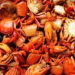 Steamed crabs on the market. — Foto de Stock