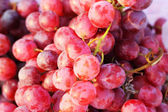 Red grape fruit - in the market. — Stock Photo