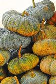 Świeży zielony dyni na rynku — Zdjęcie stockowe
