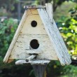 Wooden bird house in nature — Stock Photo