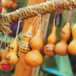 Calabash tree Korea — Stock Photo