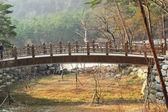 Beautiful landscape at Seoraksan Korea. — Stock Photo