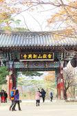 Tourists visit the Shinheungsa Temple on November 23, 2013 in Te — Stock Photo
