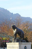 Statue Bear at shinheungsa temple in Seoraksan National Park ,Ko — Stock Photo