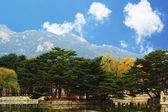 Beautiful landscape at Gyeongbok Palace in South Korea. — Stock Photo