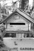 Posta kutusu vintage tarzı yeşil eğrelti otları ile. — Stok fotoğraf