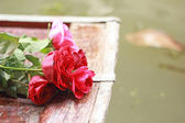 Red rose placed on the bow. — Foto de Stock
