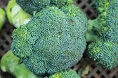 Green broccoli in the market — Stock Photo