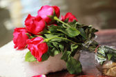 Red rose placed on the bow. — Stock Photo