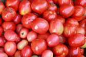 Fresh tomatoes in the market — Stock Photo