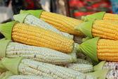 Sweet corn in the market — Stock Photo