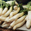Stock Photo: Fresh radish in market