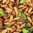 Stockfoto: Fried silk worms in market