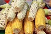 Sweet corn in the market — Stock Photo
