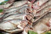 Pescado fresco en el mercado. — Foto de Stock