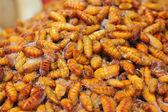 Smażone jedwab robaki w rynku — Zdjęcie stockowe