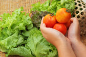 Vegetables salad and tomato in hand — Stock Photo