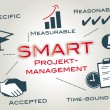 Smart, project management — Imagen vectorial