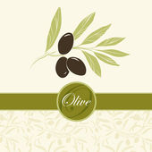 Olive oil.Vector decorative olive branch. For labels, pack. — Stock Vector
