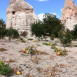 Stock Photo: Garden in Goreme. Cappadocia