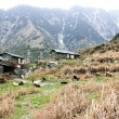 Mountain House From Stones in Himalaya — Stock Photo