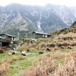 Stock Photo: Mountain House From Stones in Himalaya