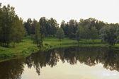 Pavlovsk Park lake and trees — Stock Photo