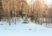 Ovelisk in Pavlovsk at Winter — Stock Photo